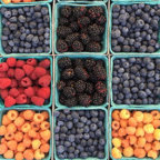 fruit and berries business armenia consulting