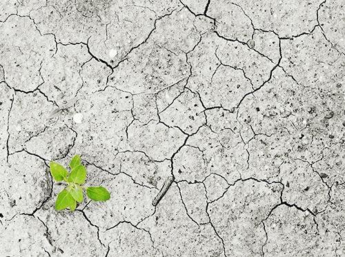 climate-change-armenia